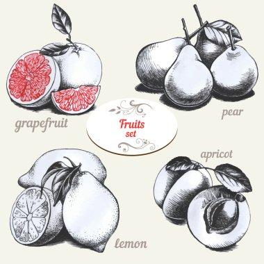 Set of drawings fruits