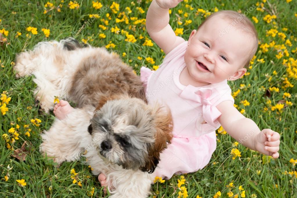 happy baby and a puppy stock photo dnf style 54179087