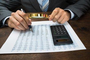 Businessperson Inspecting Financial Data