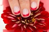 Ženská ruka s nehty manikúra