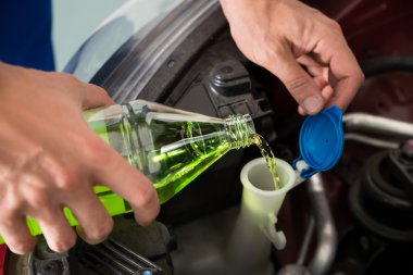 Mechanic Pouring Windshield Washer Fluid