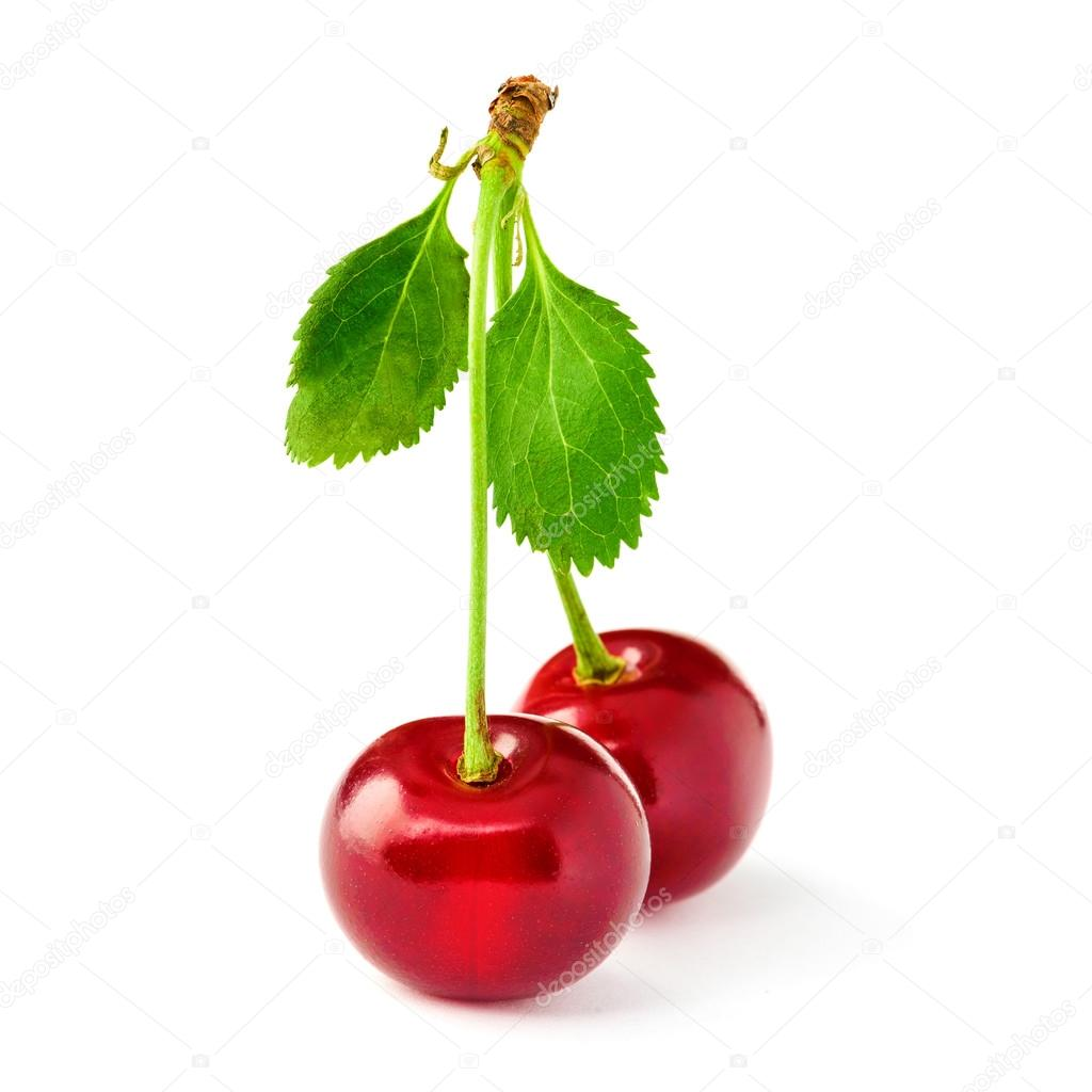 https://st2.depositphotos.com/1010669/6608/i/950/depositphotos_66087905-stock-photo-two-yummy-cherries.jpg