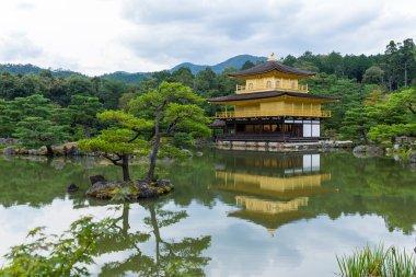 Golden Pavilion at Kinkakuji Temple
