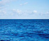 povrch modré moře a vlny