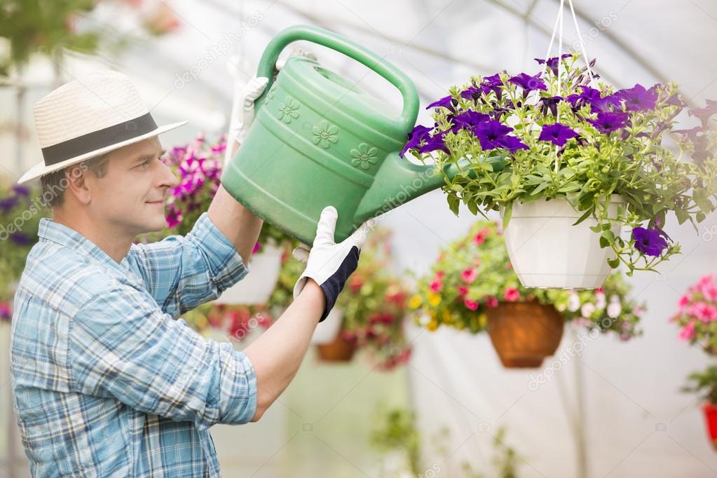 память, пожимаем фото мужчина поливает цветы думаете, что приготовить