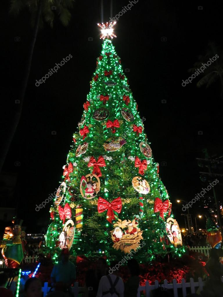 Light up at night 50-foot Norfolk pine Christmas Tree in front o ...