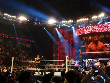 Champion Seth Rollins raises  hands into air as he stands on tur