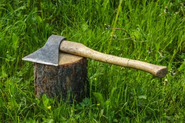 Axe on the stump.