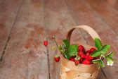 Fényképek A faluban ősszel szüreti: szaftos bogyók