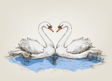 Two swans on lake love symbol clip art vector