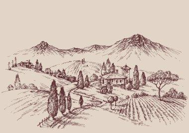 Vineyard sketch. Wine label design. Rural landscape drawing