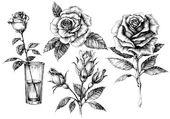 Rózsa beállítása, virágos design elemek gyűjteménye