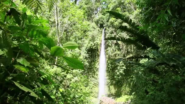 Ola Vida Waterfall