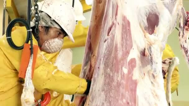Jatka pracovník řezání uvnitř kráva jatečně