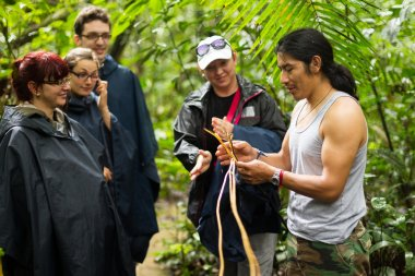 Tourists Group In Amazonia