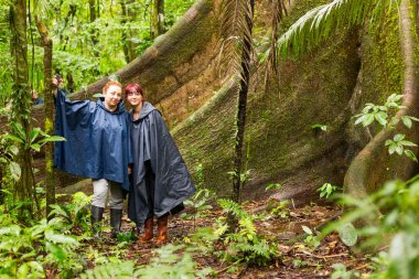 Tourists Sitting Next To A Huge Ceiba Tree Amazon