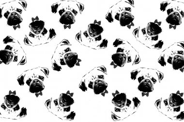 black and white graphic style pug dogs background