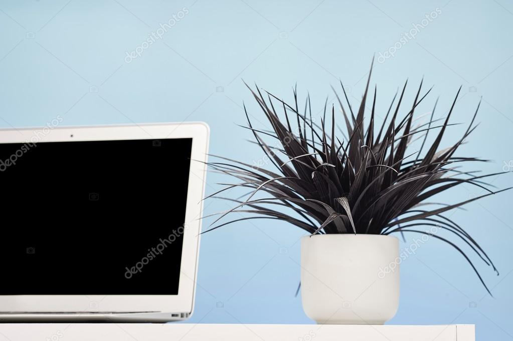 artificial indoor plant — stock photo © kitchbain #90004332 Artificial Indoor Flowers