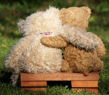 Teddy bears on bench