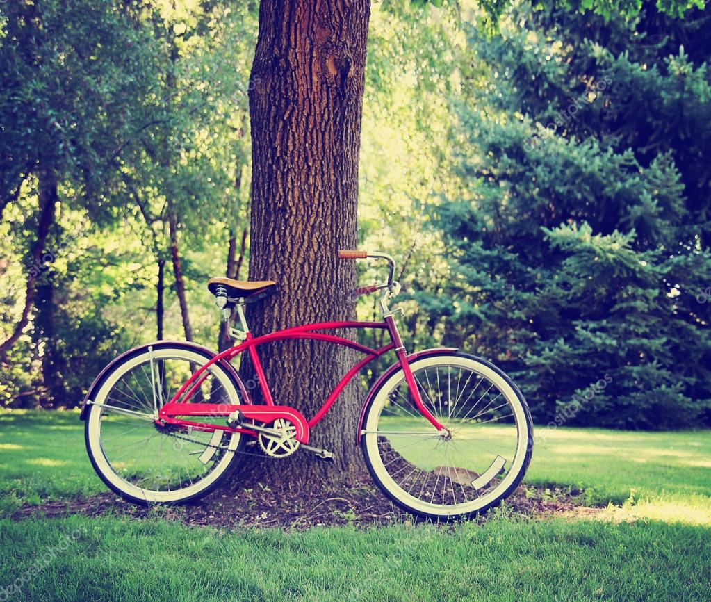 Vintage bicycle in park