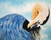 Fényképek Akvarell madár illusztráció