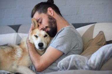 Dog getting love from owner
