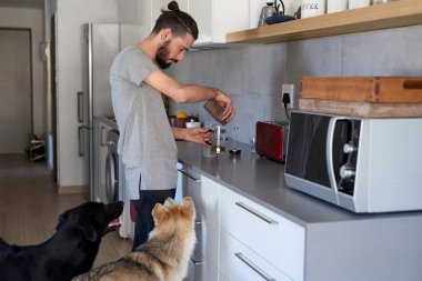 Hipster man and dogs at home
