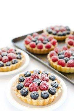 Icing sugar coated desserts