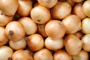 Onion background close up