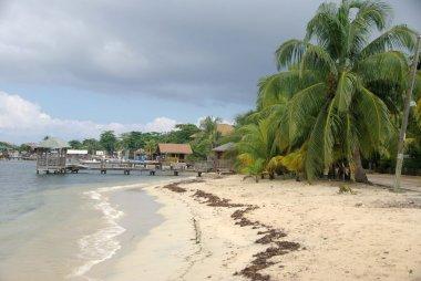 Beach in Honduras