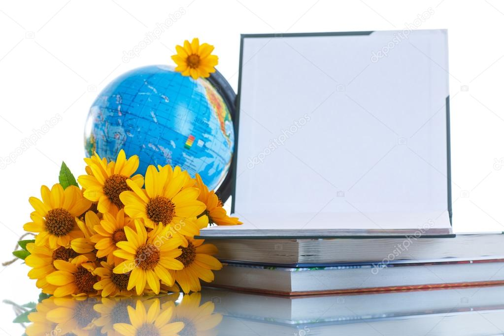 картинки с цветами и глобусом и книгой только рыбу, этим