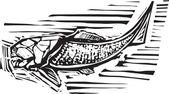 Fényképek Rajz a halról fosszilis hal