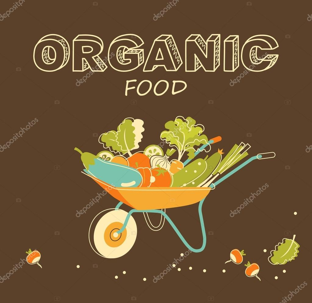 Organic vegetables concept