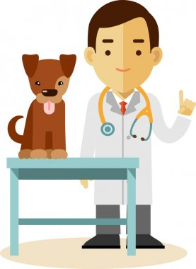 Veterinary doctor and dog