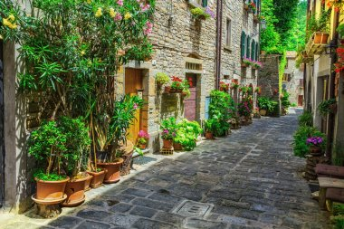Italian street in  town of Tuscan