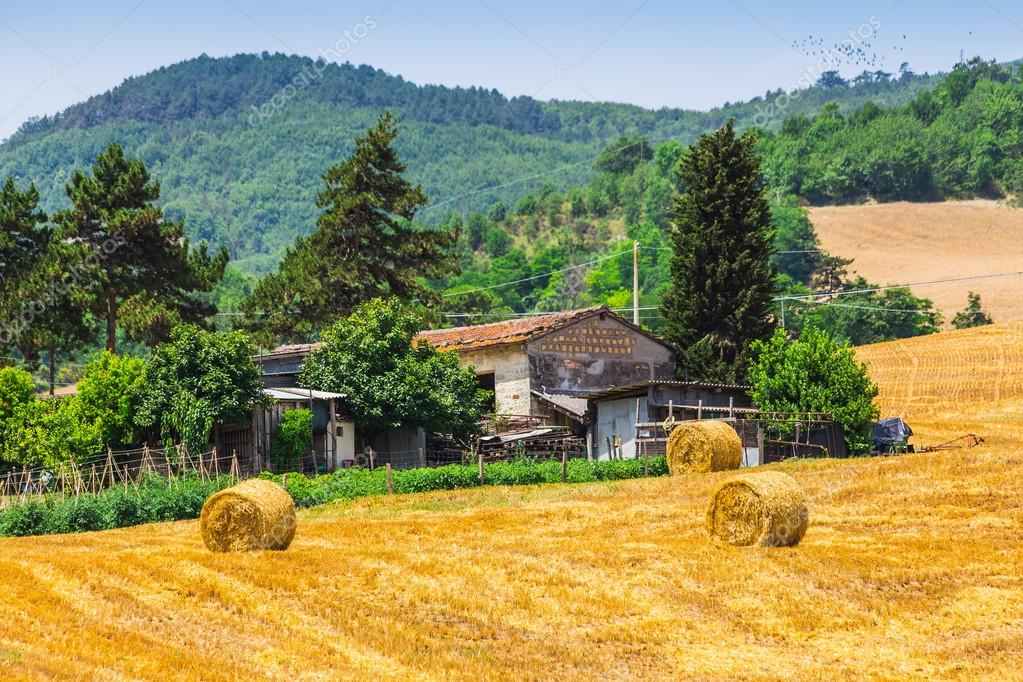 Case Rurali Toscane : Paesaggio rurale con case in toscana u2014 foto stock © alan64 #73910743