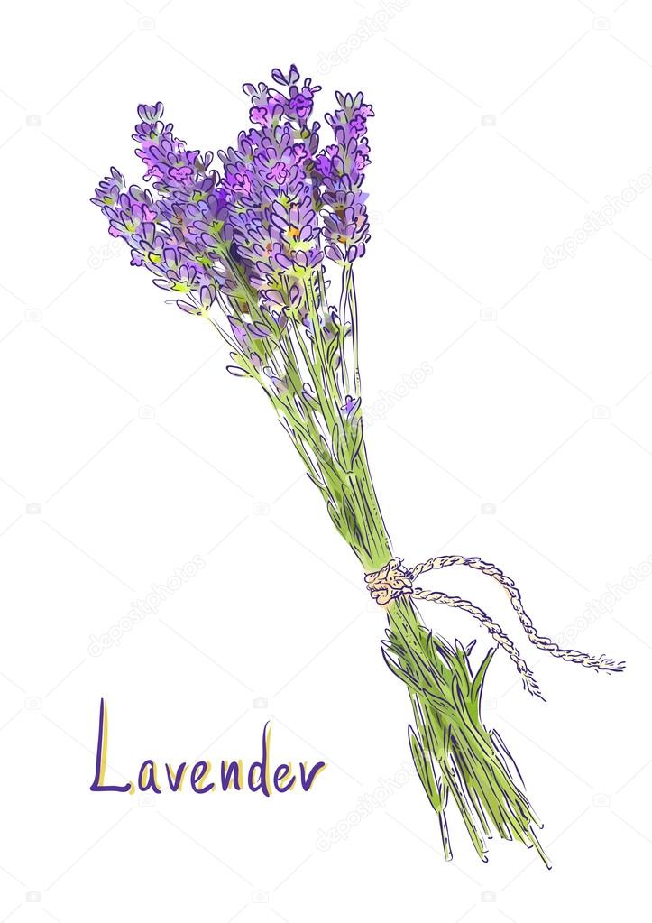 Hangs Lavender bunch with a jute rope