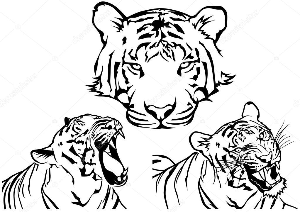 Tiger Tetovani Kresby Stock Vektor C Dero2010 104669124