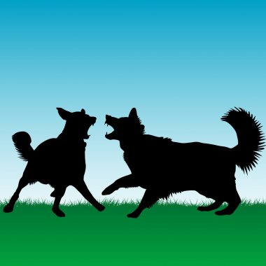 Dogs fighting or playing outdoors