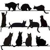 Fotografia set di sagome gatti