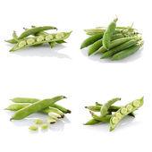 Sada zelených fazolek