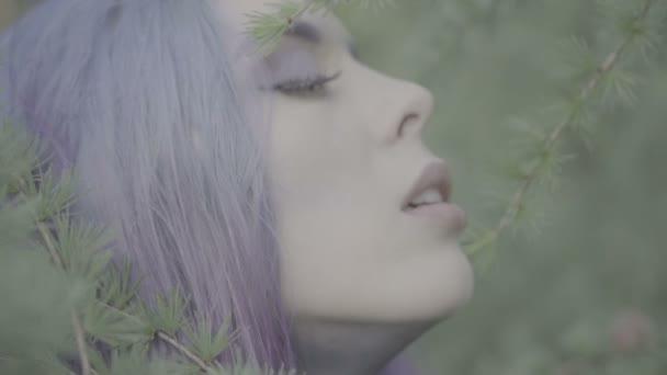 Closeup of beautiful woman in purple hair in coniferous forest - fairytale scene. Video of sensual beauty between trees in slow motion.