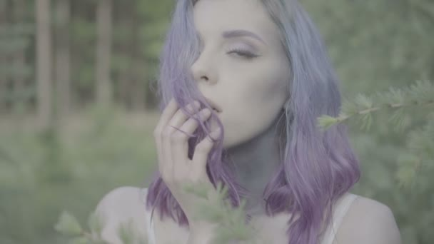 Closeup of beautiful woman in purple hair in coniferous forest touching her hair and face - fairytale scene. Video of sensual beauty between trees in slow motion.