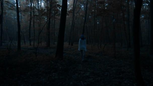 Zadní pohled na krásná žena v bílé košili, stojící v temném lese a šíření ruce - thriller scénu. Video z smyslné krásy stojící mezi stromy s zamlžené pozadí