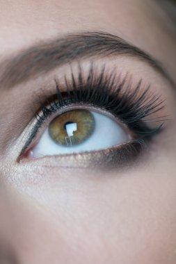 Detail of Woman Wearing Black and Gold Eye Makeup