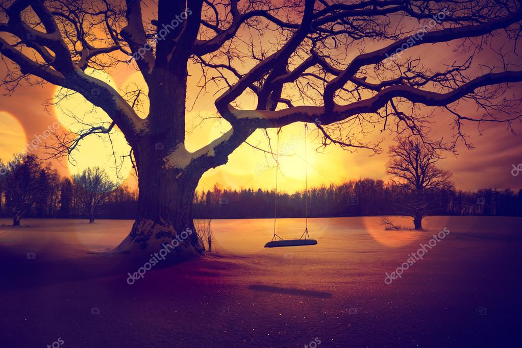 Calm Winter Landscape with Abandoned Tree Swing