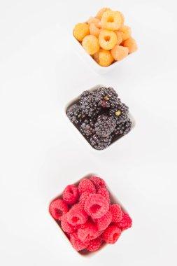 Raspberries and blackberries: bowls of fruit on white background