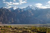 Nubra valley - Himalaya indiano - ladakh