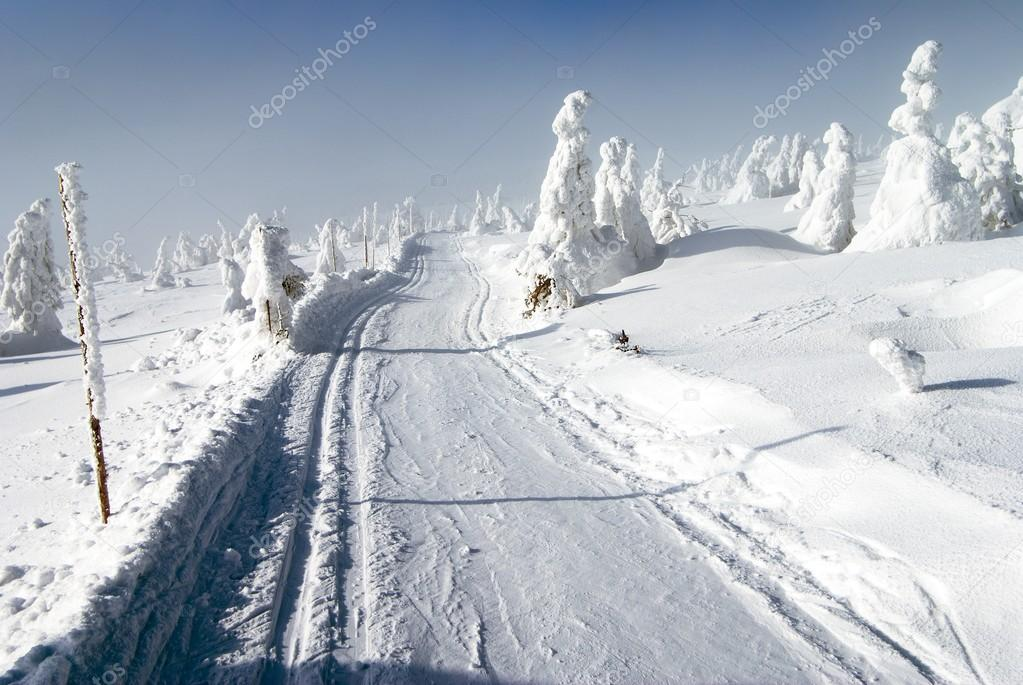 wintry landscape with modified cross country skiing way