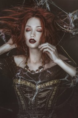 Dead witch in spider web